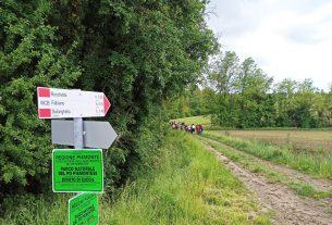 """In Piemonte c'è una """"foresta condivisa"""" di cui tutti possono prendersi cura"""
