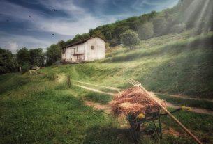Liberi Sogni: a Cascina Rapello per salutare l'autunno fra boschi e castagne