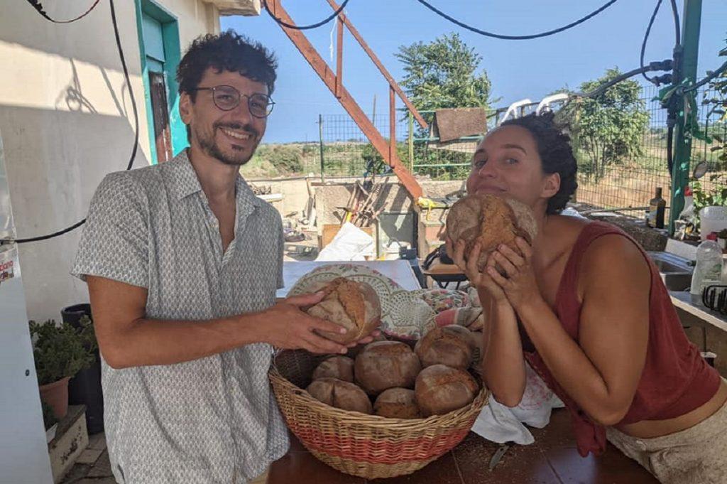 permacultura sicilia 2