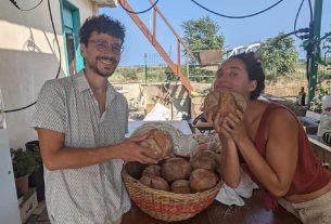 Permacultura Sicilia: resilienza e autosufficienza per un futuro sostenibile