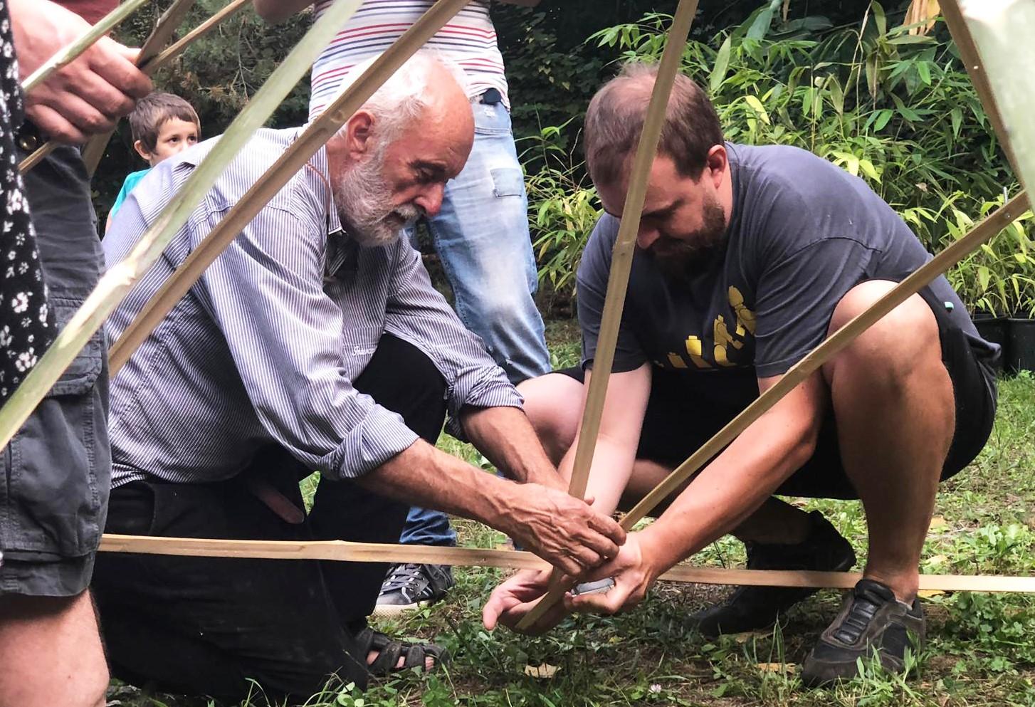 bambu pianta futuro nuova economia 1568274393