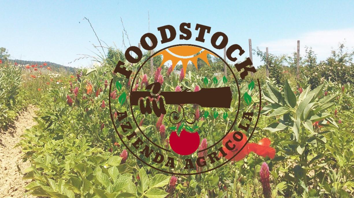 foodstock rivoluzione cibi fermentati 1553162618
