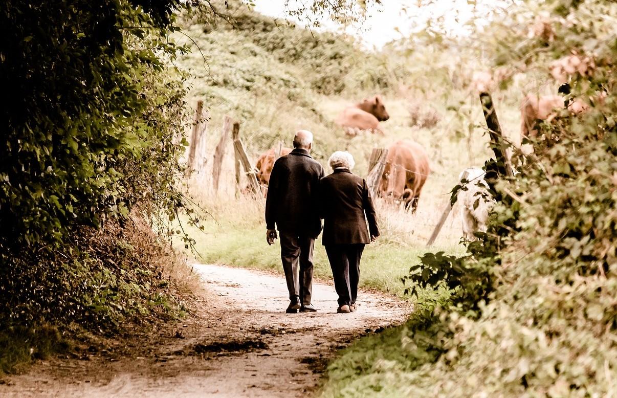 invecchiamento attivo piemonte valorizza nuove risorse per intera comunita 1555544514