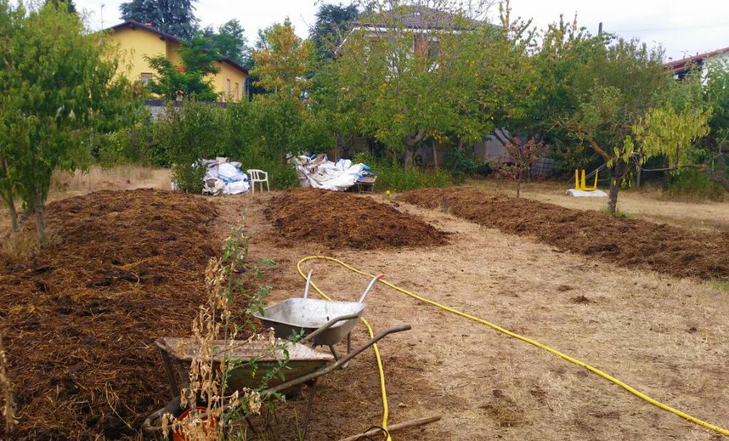 lombricoltura clandestina lombrichi aiutano pianeta 1540514733