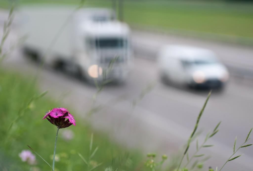 misure anti smog stop diesel inquinanti verso mobilita sostenibile 1539244457