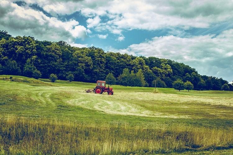 ora in piemonte nuova legge agricoltura 1547033428