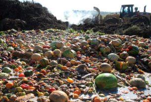 Pasti solidali per combattere gli sprechi alimentari