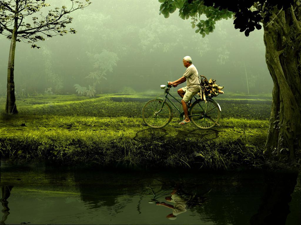 progetto cambiamenti attivita ludicodidattica sviluppo coscienza ambientale 1490348671