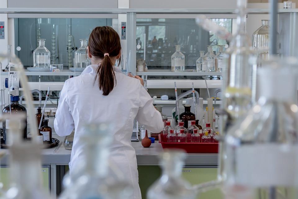 regione piemonte sperimentazione scientifica senza animali 1544657014